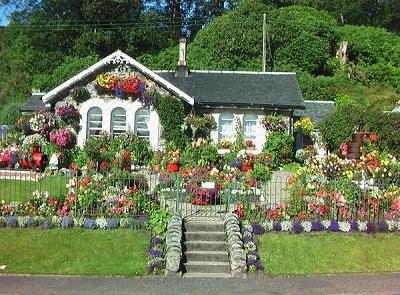 Kućica u cveću …